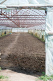 Empty greenhouse Royalty Free Stock Image