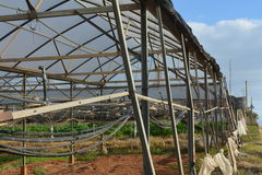 An empty greenhouse with lighting and irrigation pipes. Stock Photography