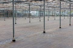 Empty greenhouse in the Netherlands waiting for the cultivation of indoor plants Stock Photography