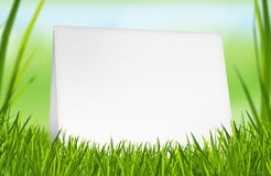Empty greeting card placed on grass. Simple template of an empty greeting card placed on grass. Your text or visual can be easily added over this card stock photo