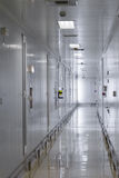 Empty hall factory. Empty hall of modern medicine factory Royalty Free Stock Photos