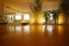 Empty hall with flowerpots Royalty Free Stock Photo