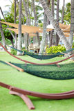 Empty hammock Royalty Free Stock Photos