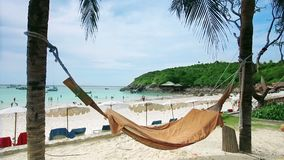 Empty hammock in an exotic beach stock footage