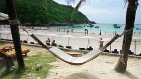 Empty hammock in an exotic beach stock video footage