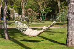 Empty hammock outdoors Royalty Free Stock Photos