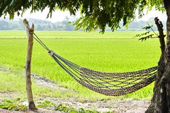 Empty hammock outdoors stock images