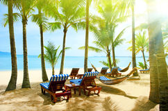 Empty hammock between palm trees Royalty Free Stock Photography