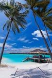 Empty hammock between palm trees on the beach. Empty hammock between palm trees on tropical beach Royalty Free Stock Photo
