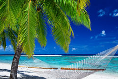 Empty hammock between palm trees on the beach Stock Images