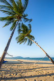 Empty hammock between palm trees on the beach Stock Photography