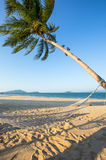 Empty hammock between palm trees on the beach Royalty Free Stock Photo