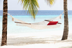 Empty Hammock Between Palm Trees Royalty Free Stock Images