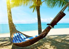 Empty hammock between palm trees on tropical beach Royalty Free Stock Images