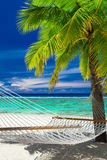 Empty hammock between palm trees on tropical beach of Rarotonga Stock Photos