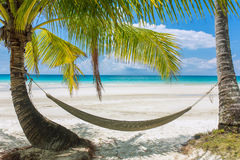 Empty hammock between palm trees on tropical beach Stock Photos
