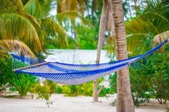 Empty hammock between palm trees on tropical beach Stock Photo