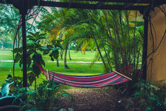 Empty hammock between palms trees at sandy beach Royalty Free Stock Image