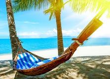 Empty hammock between palms trees Royalty Free Stock Photo