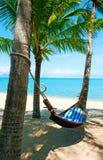 Empty hammock between palms trees at sandy beach Stock Photos
