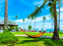 Empty hammock between palms trees Royalty Free Stock Photography