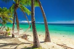 Empty hammock in the shade of palm trees on vibrant tropical Fiji royalty free stock photos