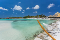 Empty hammock  on tropical beach. Empty hammock on tropical beach in flamingo island. Aruba Stock Images