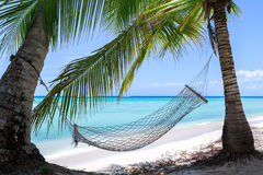 Empty hammock on a tropical beach Royalty Free Stock Photos