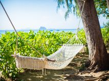 Empty hammock on the tropical beach with trees and beautiful sea. View background Stock Photography