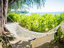 Empty hammock on the tropical beach with trees and beautiful sea. View background Stock Photos