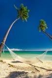 Empty hammock under tall palm trees, tropical beach, Fiji. Island Stock Image