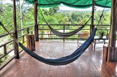 Empty hammocks at a jungle resort Royalty Free Stock Photo