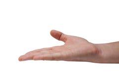 Empty hand Royalty Free Stock Photo