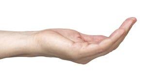 Empty hand Royalty Free Stock Image