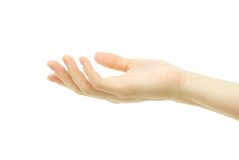 Empty hand. Isolated on white background Stock Images