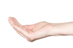Empty hand over a white background. Stock Photo