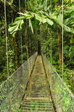 Empty hanging metal bridge in tropical forest Stock Images