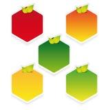 Empty hexagon label set with leaves Stock Photo
