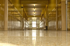 Empty high school corridor royalty free stock image