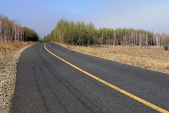 Empty highway. Highway through the forest with empty lanes Royalty Free Stock Photo