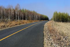 Empty highway. Highway through the forest with empty lanes Stock Photography