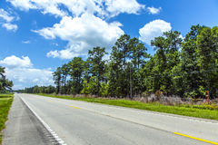Empty highway in america with trees Royalty Free Stock Photo