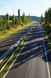 Empty highway lined with a row of trees Stock Photography
