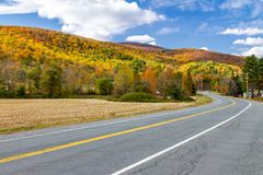 Empty highway road through colorful fall forest landscape. In New England royalty free stock photos