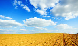 Empty hill soil on a sunny day Royalty Free Stock Photography