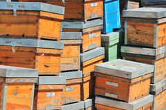 Empty hives. Stacked waiting for new tenants Stock Photography