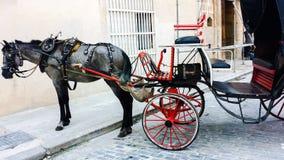 Empty horse carriage on old Havana street Royalty Free Stock Photos