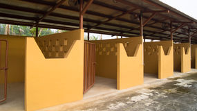 Empty Individual Stalls Horse Stable stock image