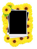 Empty instant photos and sunflowers Stock Images