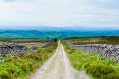 Empty lane with stone fences Stock Photo